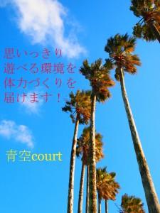 青空court2013