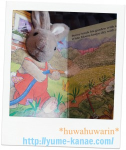 rabi-bookhuwa